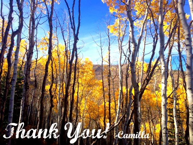 Thank You photo NMHW