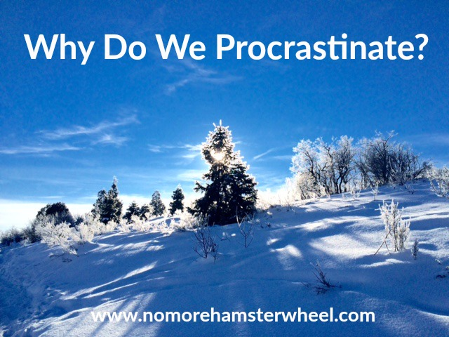 Why Do We Procrastinate