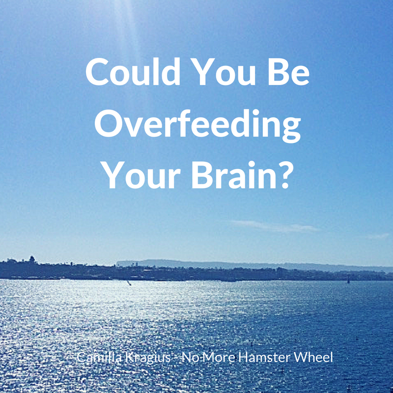 could-you-be-overfeeding-your-brain