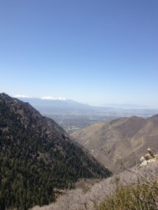 View of Salt Lake City from a mountain.