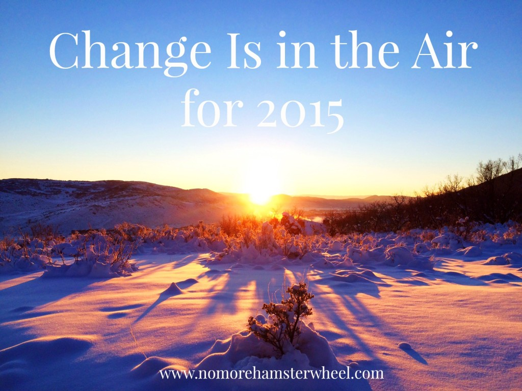 Change Is in the Air for No More Hamster Wheel in 2015.
