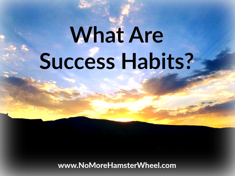 What Are Success Habits